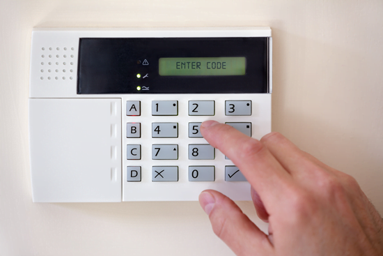 Security Systems for Business